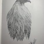 Birds around 1