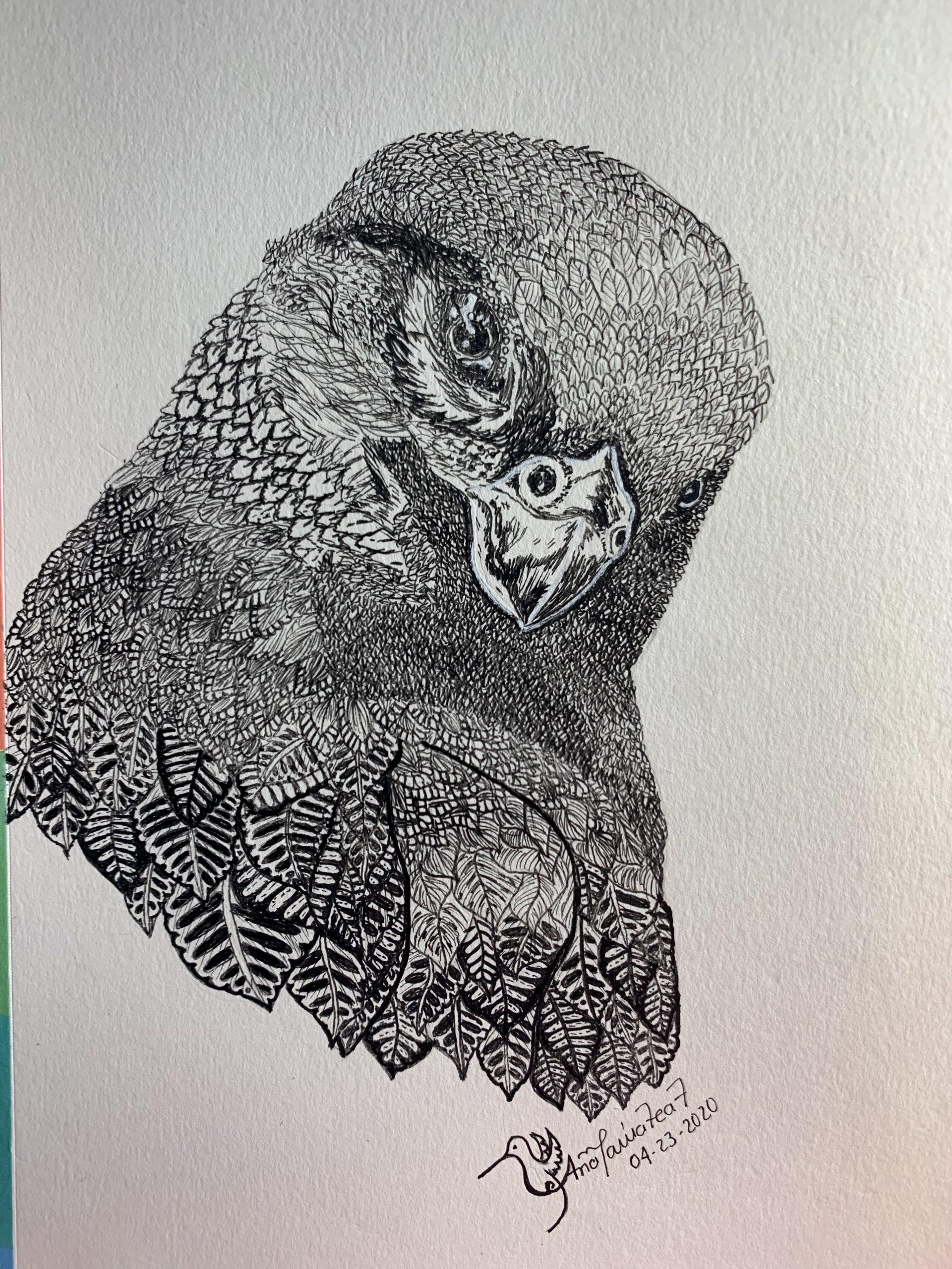 Birds around 2