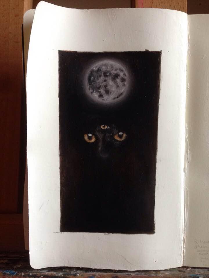Black Cat 🌕