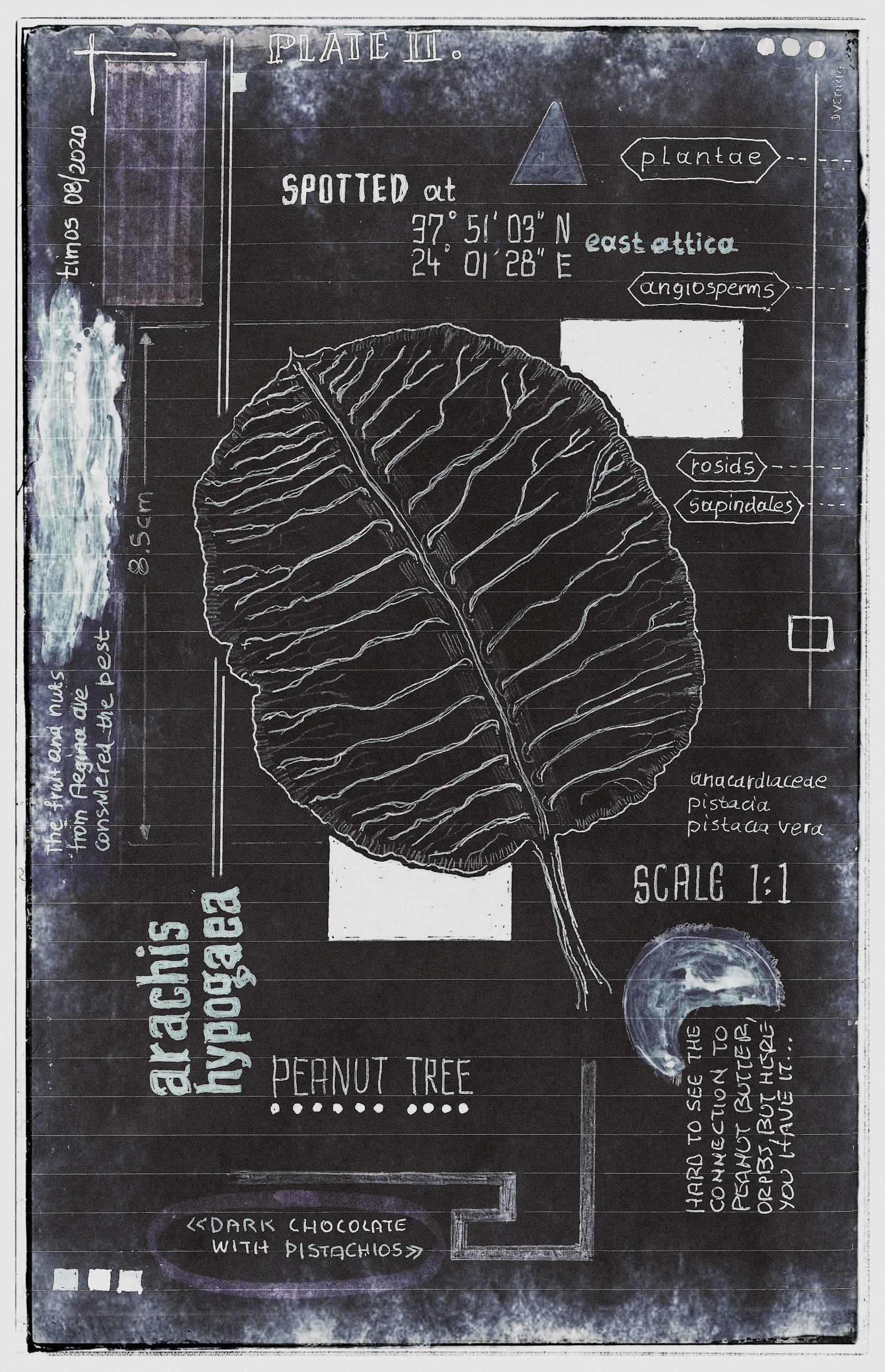 ut in arbores vivere | plate II