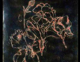 antheum floraem