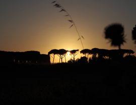 Quel giorno…quel tramonto. Unico eppure uguale