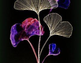 nocturnal botanist