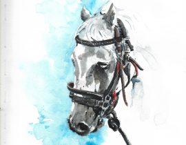 Horse watercolor series… #1