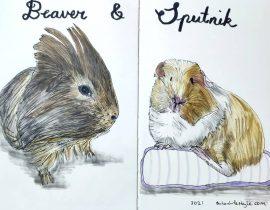 Beaver and Sputnik