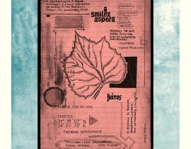 lectiones plantis docere | plate VIII
