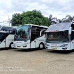 Sewa Bus Pariwisata Jakarta – RedWhite Star Primajasa