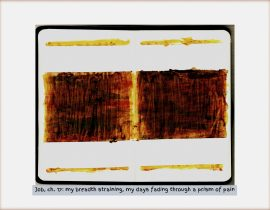Diptychs of Distress :: diptych 14 of 49