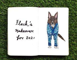 Pet portrait : Fleck