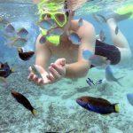Paket Wisata Pulau Harapan – Open Trip 2D1N Pulau Seribu