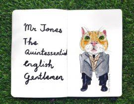 Cat portrait : Mr Jones