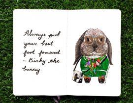 Binky the bunny