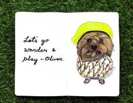 Oliver dog fashion makeover