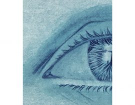 study of eye's details