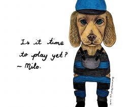 Milo pet portrait fashion makeover