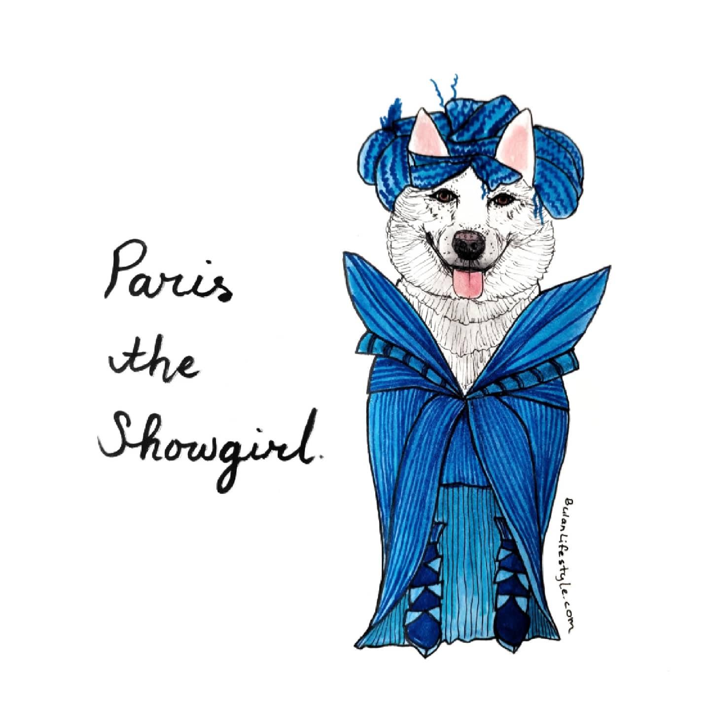 Paris the Siberian Husky