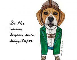 Cooper pet portrait fashion makeover