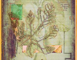 plantae   encaustic plate 07