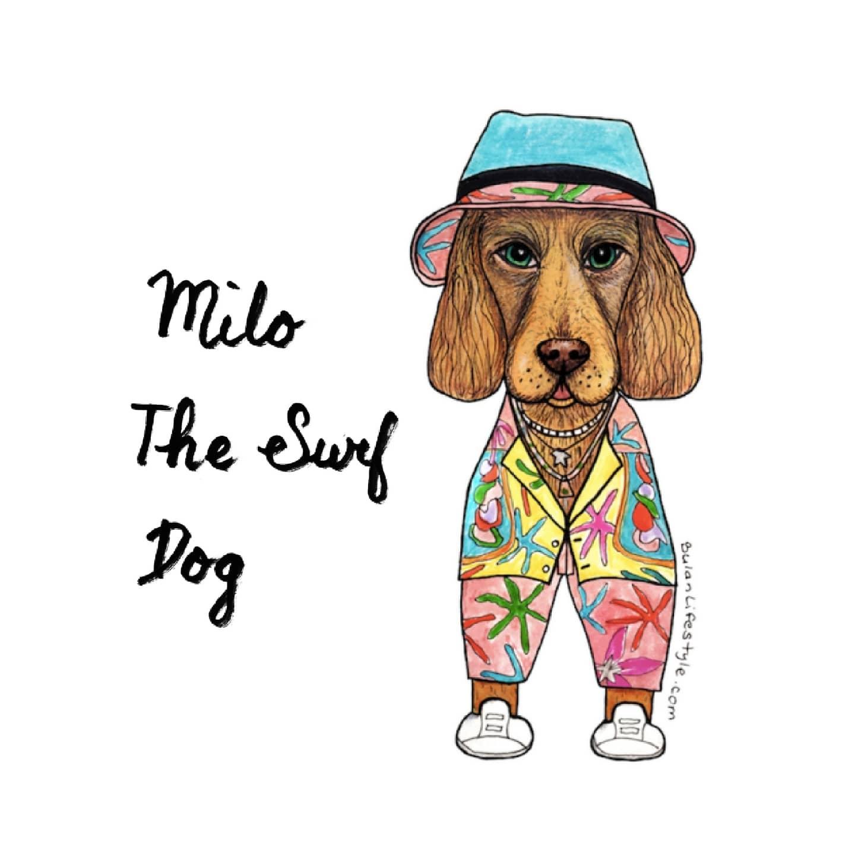 Milo the Surf dog