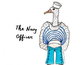 The navy officer