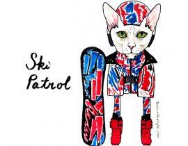 Pablo the cat