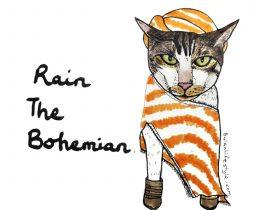 Rain the Bohemian pet portrait
