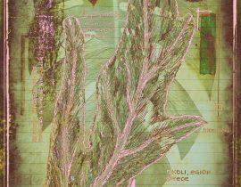 plantae | encaustic plate 11