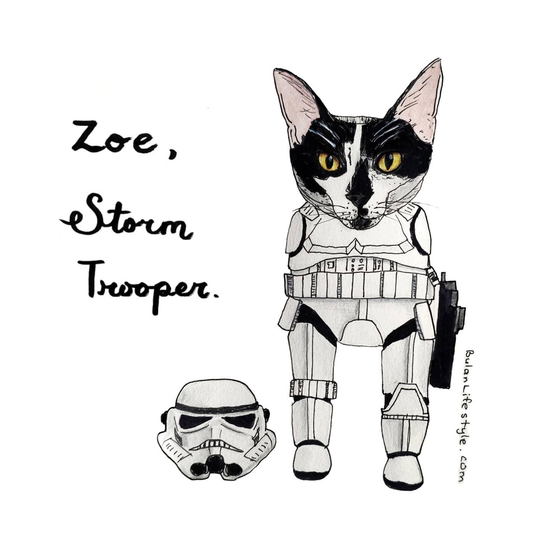 Zoe the storm trooper