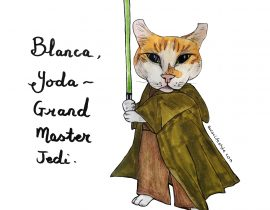 Blanca the Scottish fold as Yoda