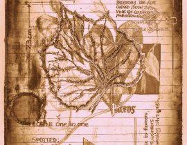 timothyensis codex | folio 08