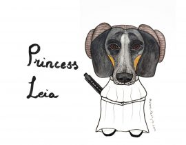 Princess Leia the sausage dog