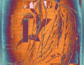 botanica ideata :: folio 003