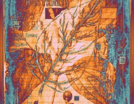 botanica ideata :: folio 004