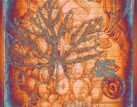 botanica ideata :: folio 005