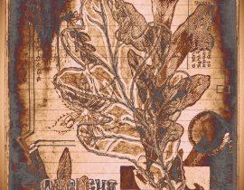 plantae solaricus   tabla 06