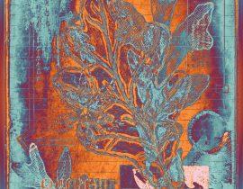 botanica ideata :: folio 006