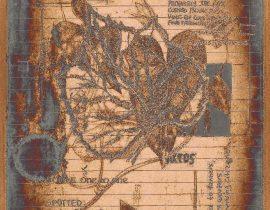 plantae solaricus | tabla 08