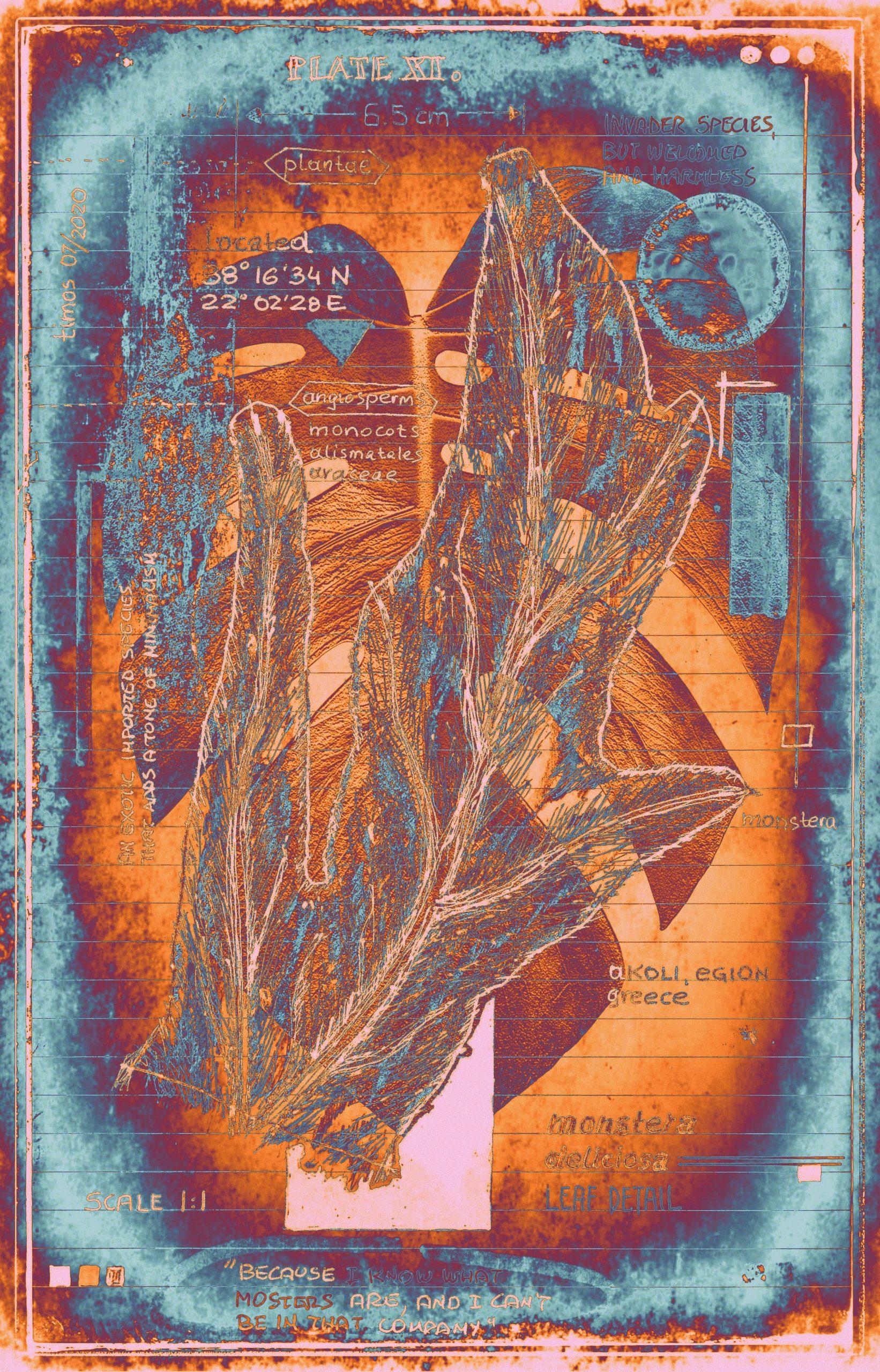 botanica ideata :: folio 011