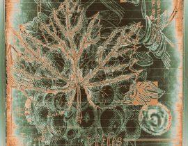 floraritum positum :: tbl a.05