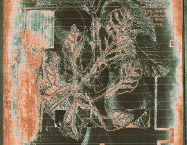 floraritum positum :: tbl a.07