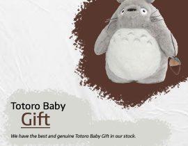 Totoro Baby Gift