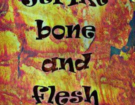 rug and bone