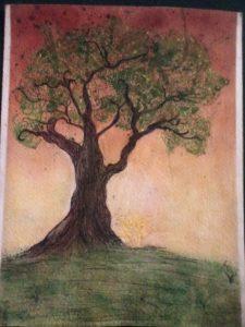 D's tree 16348544992282135369712