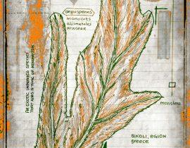 vitae verdantix planta / folio a.11